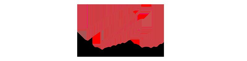logo-martinlogan
