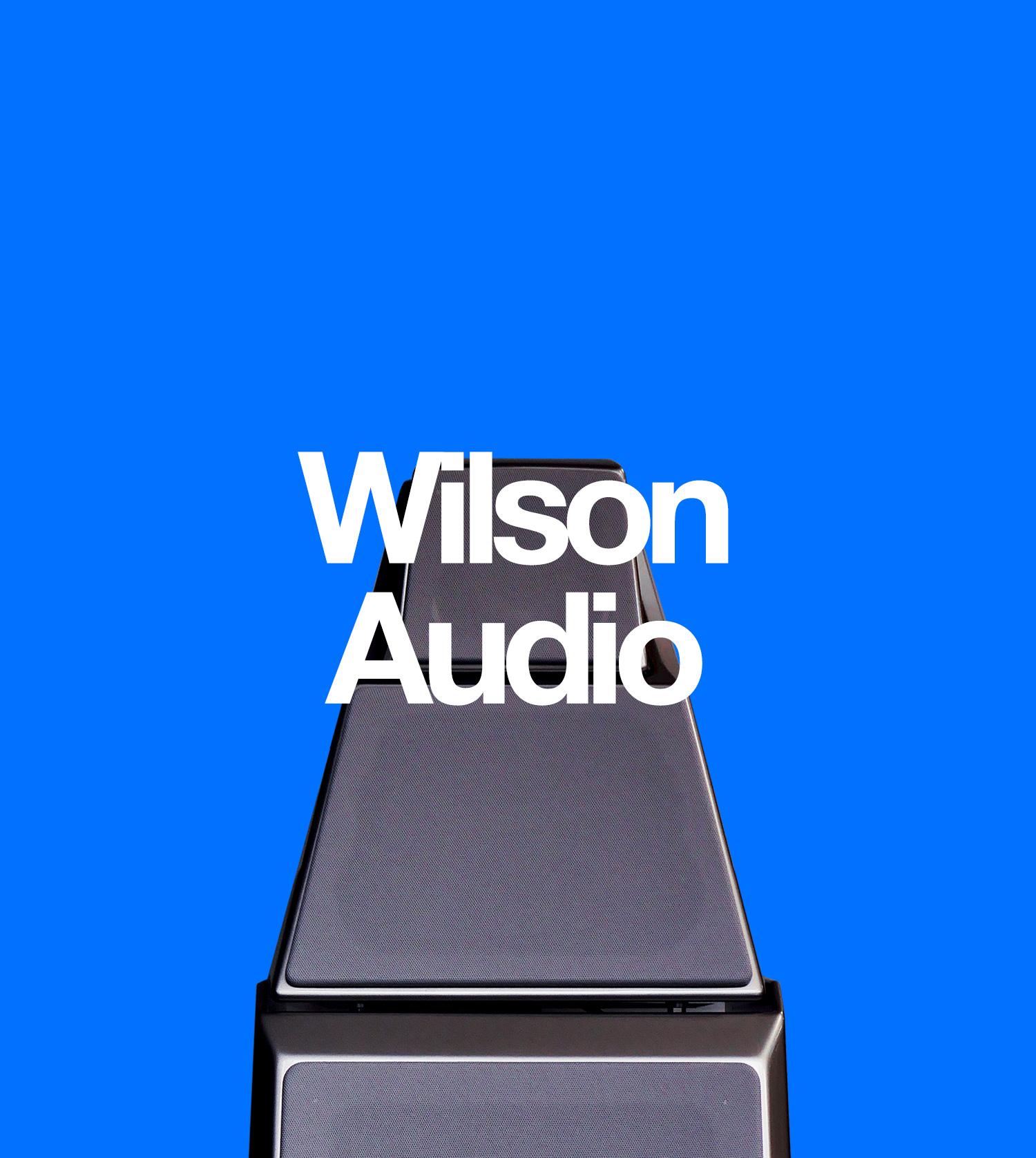 Wilson Audio, Hi-Fi